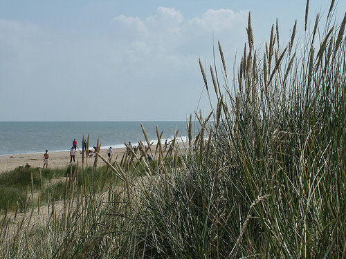 Caister On-Sea and the History of the Saxon Shore