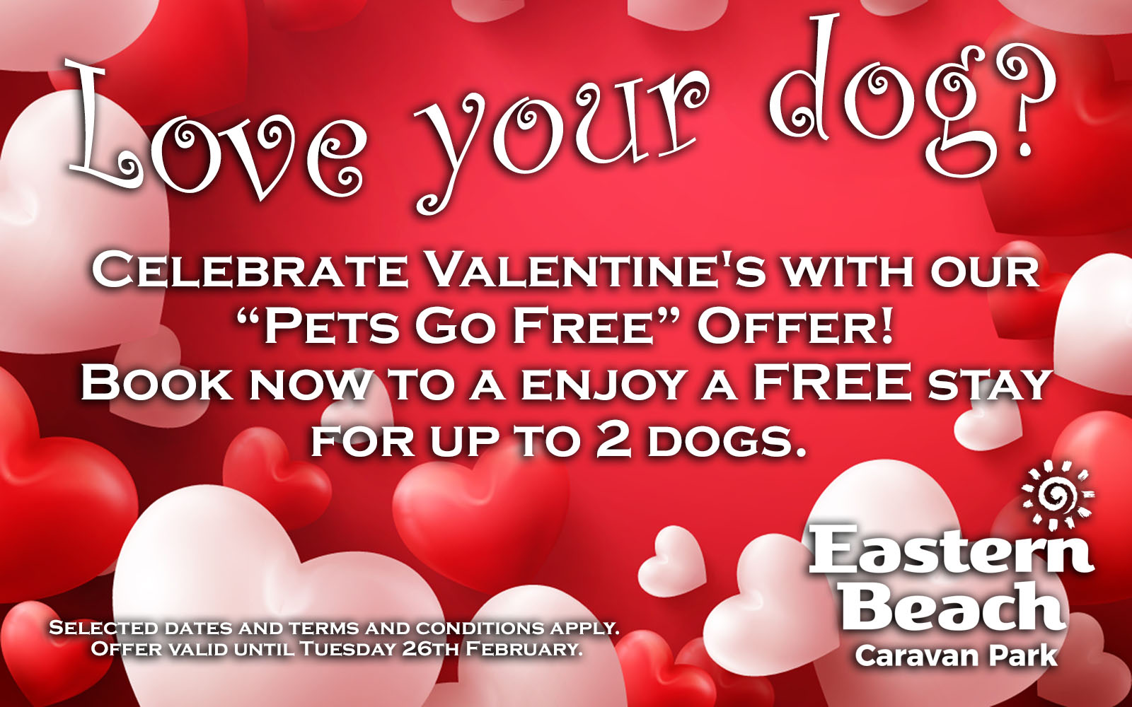 Love your dog - Special Offer